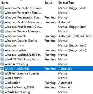 Microsoft Windows WLAN AutoConfig Service Option